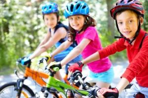 bike-775799